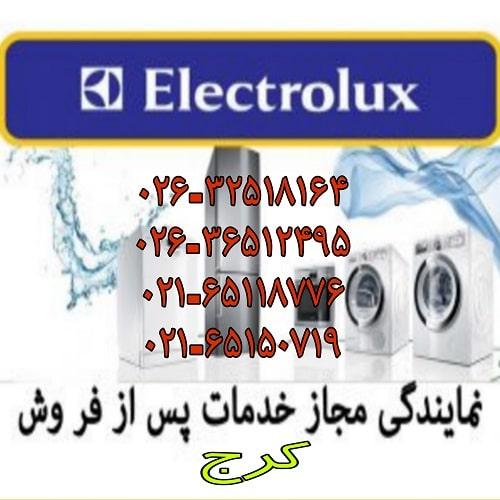 نمایندگی تعمیر لوازم خانگی الکترولوکس در کرج